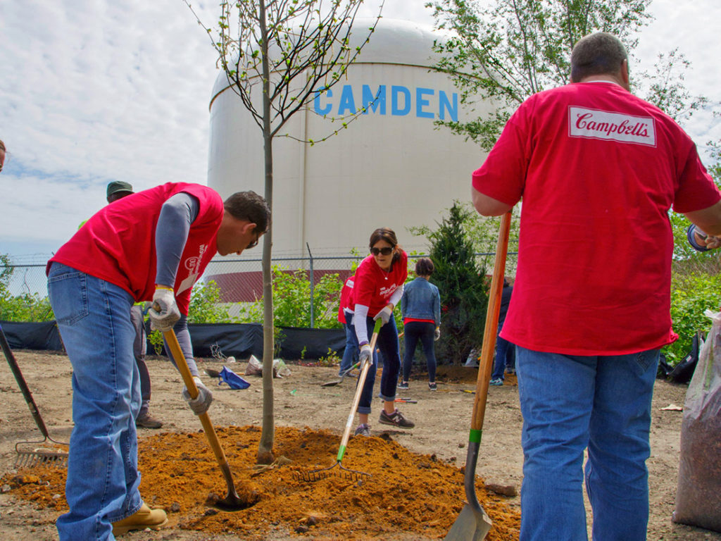 Campbell Employees Planting Trees in Camden