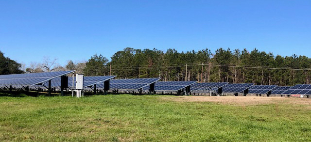 Dollar Farm Products also has several acres of solar panels on the farm that help offset their power consumption